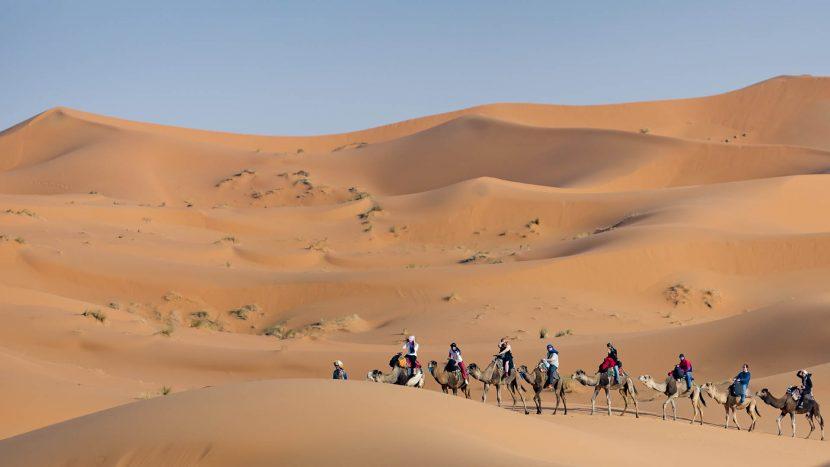 Riad Dar Hassan camel activities