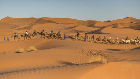 Activities Riad Dar Hassan Camel Caravan - photo by Ezyê Moleda all rights reserved